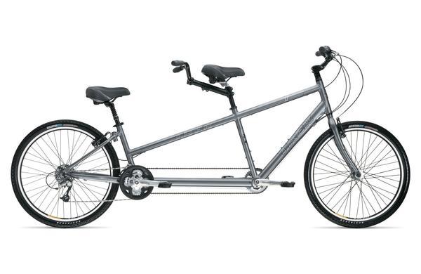 Skagway Tandem Bike Rental